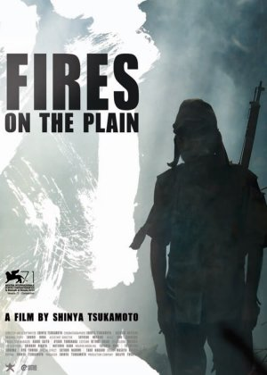 Fires on the Plain poster