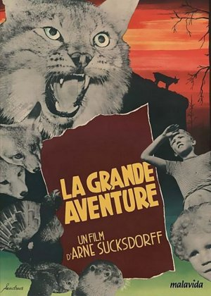 The Great Adventure poster